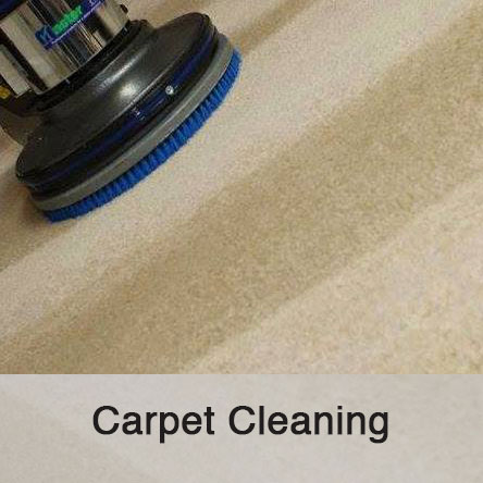 carpet-area-rug-cleaning